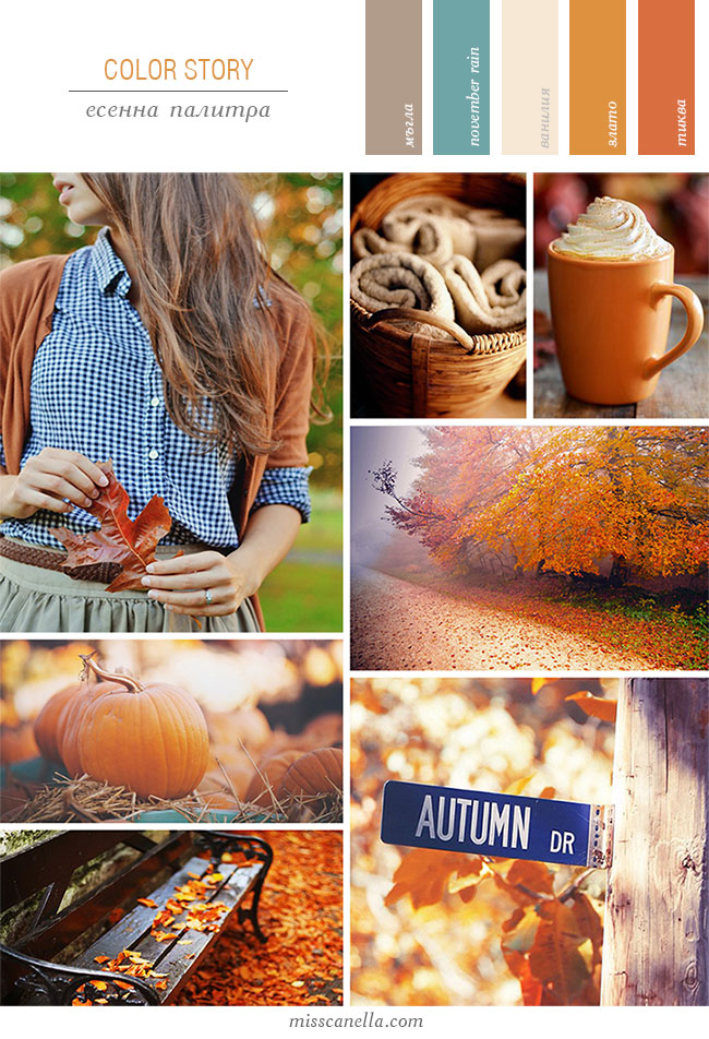 color-story-fall-41
