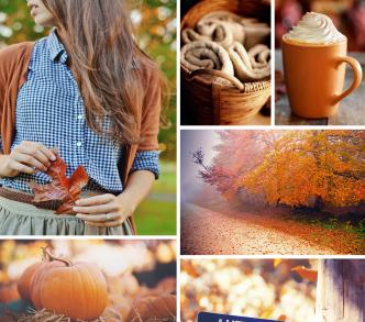 autumn board- FI987