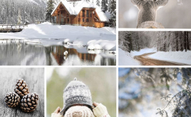 style-color-winter-fi