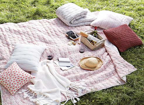 summer-picnic-010