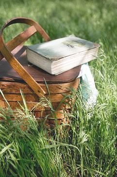 summer-picnic-08