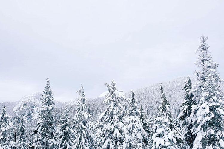 ski-trip-5411