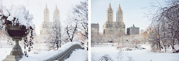 winter-in-NYC-1104