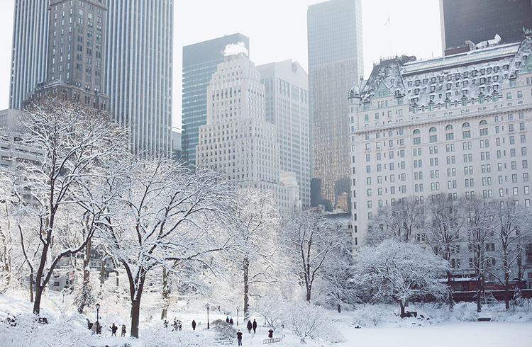 winter-in-NYC-1105