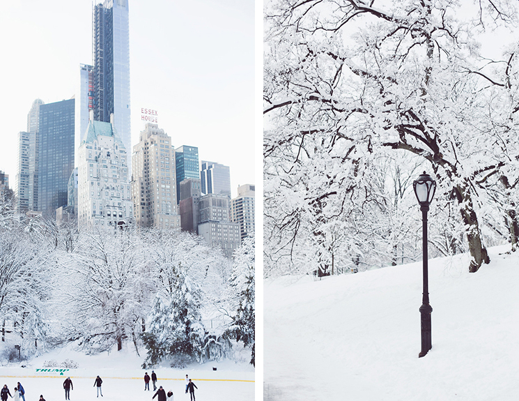 winter-in-NYC-1110