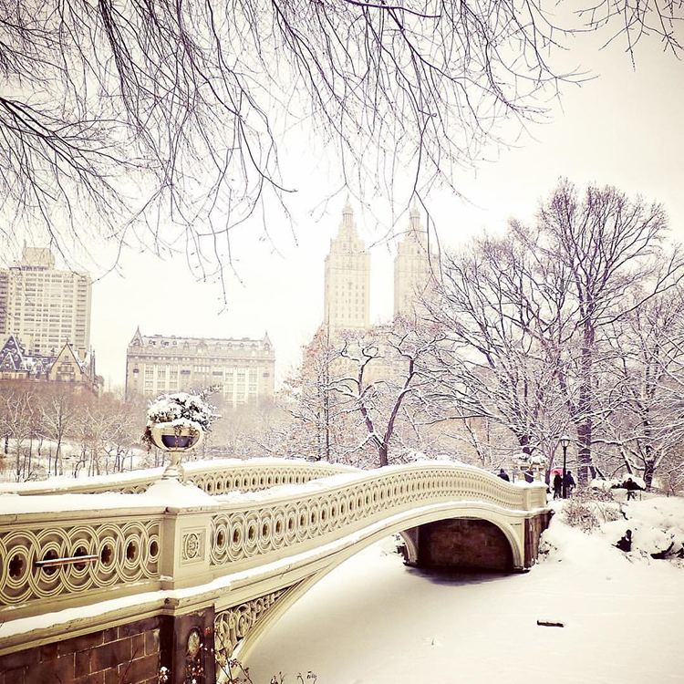 winter-in-NYC-1112