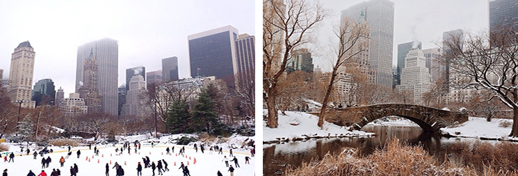 winter-in-NYC-1113