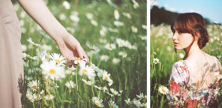 daisy1208