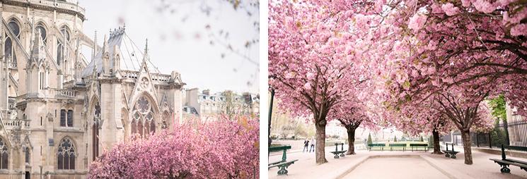 paris-spring-11307