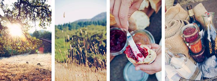 5-picnic-ideas-776