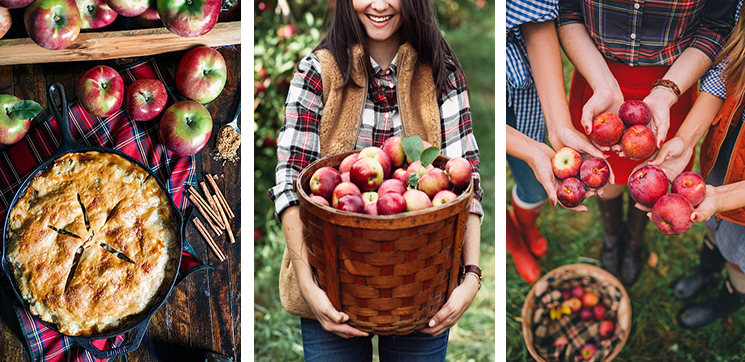 apple-picking 13